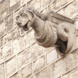 Gargoyle Statues on Gothic Cathedral — Stock Photo