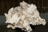 Calcite, Quartz and Pyrite — Stock Photo