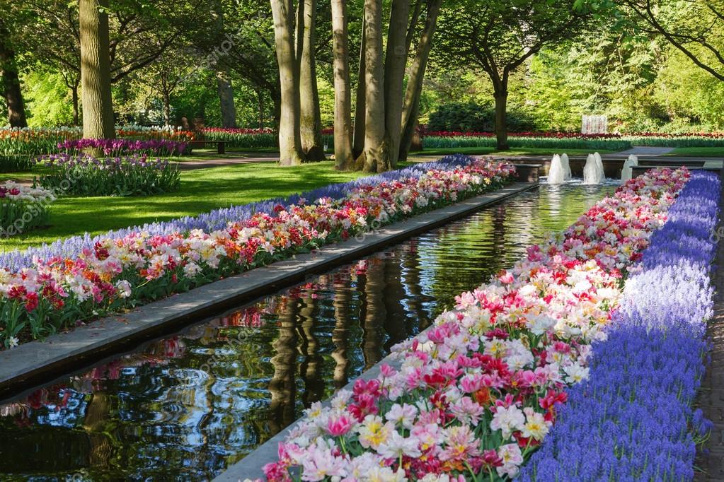 Keukenhof jardin de la fleur plus grande en europe for Le jardin keukenhof
