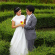 Stock Photo: Newly married couple in park
