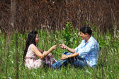 Couple sweet teasing in grassland — Stock Photo