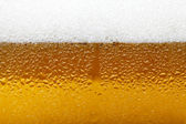 Close-up picture of a beer with foam and bubbles — Stock Photo
