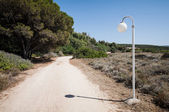 Lamppost in a deserted landscape — Stock Photo