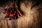 Dried hot red chilies — Foto Stock