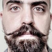 Larga barba y el bigote modernillo — Foto de Stock
