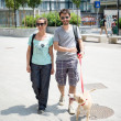 Couple with dog walking in the street — Stock Photo #27393265