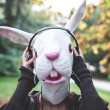 Rabbit mask woman listening to music — Stock Photo #34067961