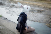 Rabbit mask man in a desolate landscape — Stock Photo