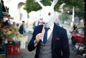 Rabbit mask man with carrot — 图库照片