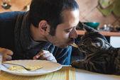 Mensch und Katze Eatingin Mittagessen — Stockfoto