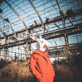 Rabbit mask woman red coat — Stock Photo