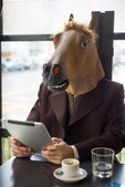 Man lifestyle horse mask — Stock Photo