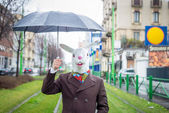 Man in  rabbit mask — Stock Photo