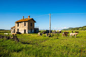 Sardinian nuraghe natural landscape — Stock Photo