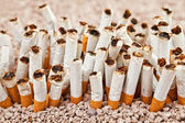 Wall of cigarettes — Foto Stock