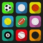 Sport balls flat icons set — Stock Vector