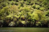 живописный маршрут рядом с плотины — Стоковое фото