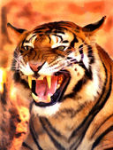 Angry Face Tiger Portrait Painting — Stock Photo