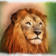 Royal King Lion Portrait Water Color Painting — Stock Photo