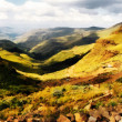 Painting of Sani Pass — Stock Photo
