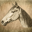 Stock Photo: SepiToned Horse Portrait