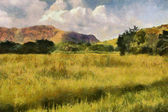 Picturesque Grassland Painting — Stock Photo