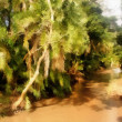 Painting Muddy River Running Through Tropical Forest — Stock Photo