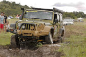 Gecko Pearl Green Jeep Wrangler Rubicon crossing mud obstacle — Stok fotoğraf
