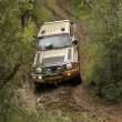 Постер, плакат: Green Toyota Land Cruiser 4 Door