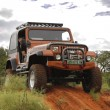 Постер, плакат: Crush Beige Jeep Wrangler Off Roader V8