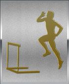 Gold on Silver Hurdles Sport Emblem — Stock Photo