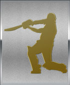 Gold on Silver Cricket Batsman Sport Emblem — Stock Photo