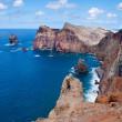 Madeira — Stock Photo #12088748