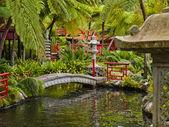 Oriental Garden — Stock Photo