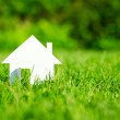 House in green field — Stock Photo #13783612