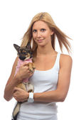 Gelukkige vrouw houdt in handen kleine chihuahua hond of puppy — Stockfoto