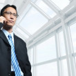 Professional Asian Businessman — Stock Photo