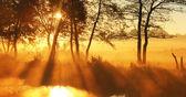 Panorama rays of the rising sun — Stock Photo