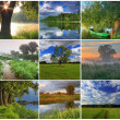 Collage of spring landscapes — Stock Photo