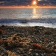 Stock Photo: Sunrise on ocebeach