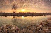 Surise under the river in spring — Stok fotoğraf