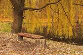 Vecchio parco in autunno — Foto Stock