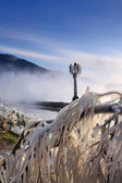 Icicles on the trees after a storm on the waterfront — Stock Photo