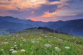 Beautiful sunset in the mountains in summer — Stock Photo