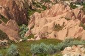 Rose Valley in Cappadocia — Stock Photo