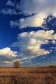 голубое небо с облаками над полем — Стоковое фото