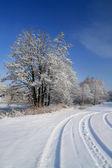 在阿尔卑斯山的山脚下大雪寒冬 — 图库照片