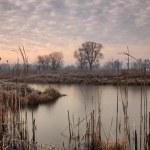 Autumn sunrise on the river — Stock Photo