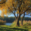 Stock Photo: Misty autumn sunrise on river bank