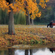 Stock Photo: Misty autumn